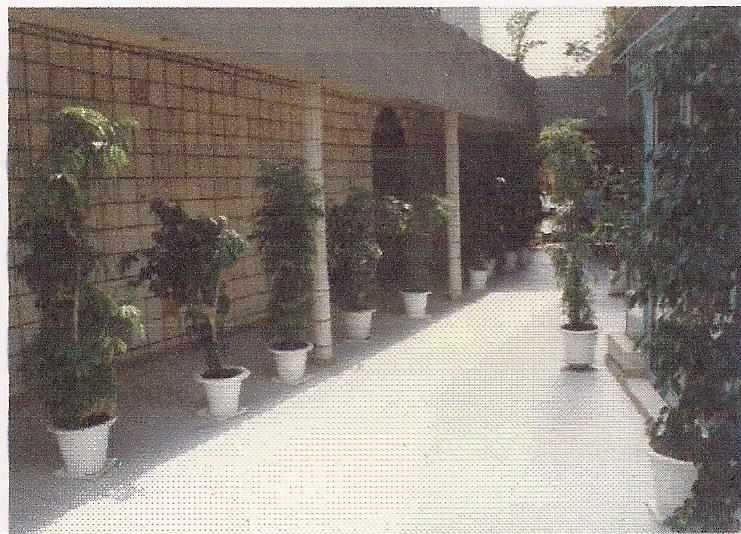 HOTEL AL AFIFA (6)