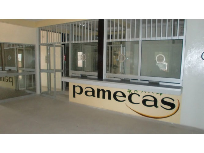 PAMECAS-PIRE-1